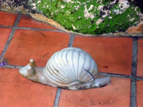 big african snail sculpture