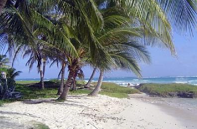 miami beach minutes to blue bayou villa rental barbados