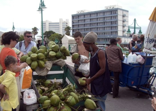 coconut water seller bridgetown barbados