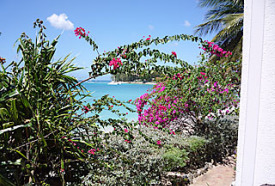 beachfront condominium garden barbados