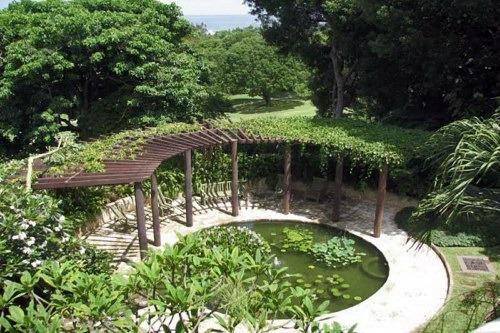 garden at villa elsewhere barbados