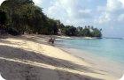gibbs beach west coast barbados