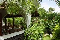 mangoes  rental by owner