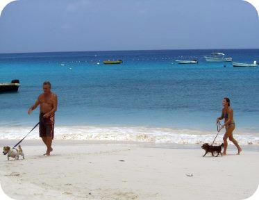 accra-beach-barbados