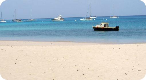miami-beach-barbados