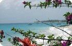 miami beach south coast barbados